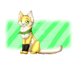 Socks by SolarXolverite
