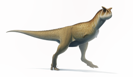 Carnotaurus for Wikipedia by FredtheDinosaurman