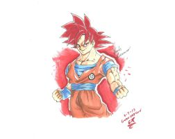 Goku SSJ God by Draw4fun2