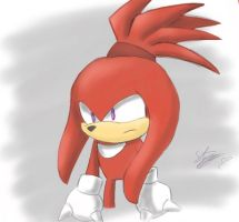 Knuckles' Hair by sarahlouiseghost