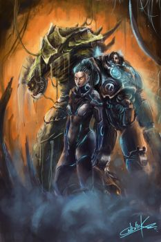 Starcraft 2 Heart of the Swarm by VitoSs