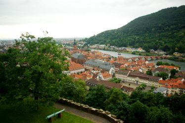 View from Heidelberg Castle over the city by steppeland