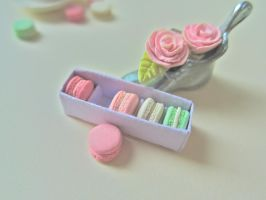 Box of Macarons 3 by AGTCT