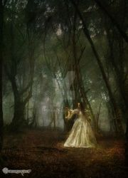 The Forest of Shadows by Branawen