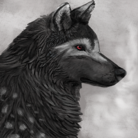 Jake the Wolf by Noctualis