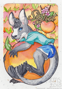 signet sealroo badge by gerbilfat