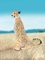 Cheetah by vectorbars