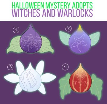 [Floralling] Witches and Warlocks! [CLOSED] by Nokiry