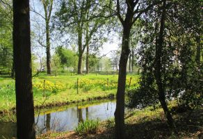 Easter Scenery in Amstelpark by ToveAnita