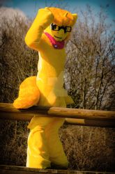 Honey Bass Fursuit outside Shoot (edited) by BassPlushProductions