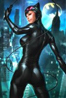 Catwoman Repaint by CyberGal2013