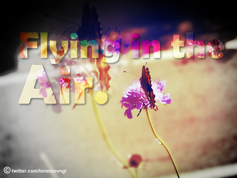 Flying in the Air. by LoreGfx
