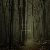 In the Forest of Ancient LIght by Karezoid