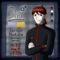 Character Reference - Silver by ari1nly