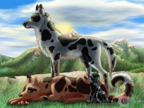 Blue Red Merle by FlyingPony