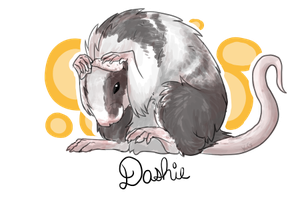 Rat commission by Koiley