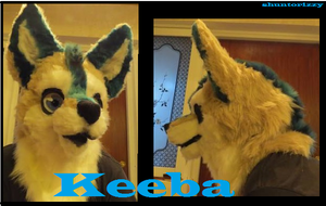 ~Shuntorizzy Studio~ Keeba (commission) by shuntorizzy