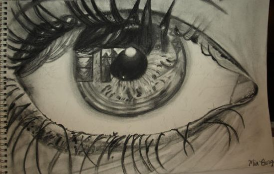 the way eye see it by miester