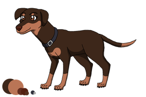 Dogs of the Hidden World: Astrid Ref Sheet by DragonDogFilmsG