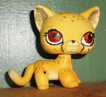 Freckles the Ticked Cheetah by EdgeofFear