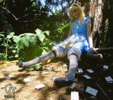 Alice in Wonderland by Orin10