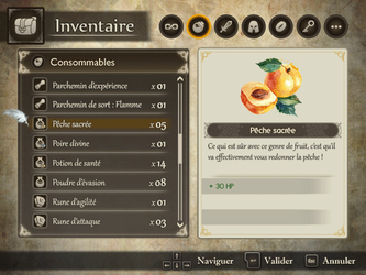 Menu - Inventaire by DarkVoxx