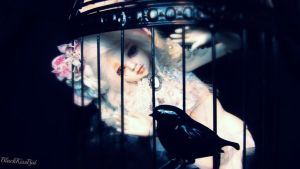 Caged by BlackKissBjd