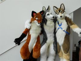 3 fursuits by Ffex