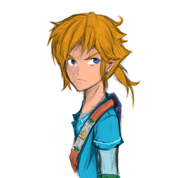 The New Link by TheFirtsSoul
