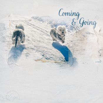 Coming and Going by Eijaite