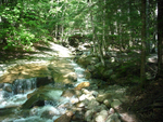 Flume Middle Stream - NH by Mozdog