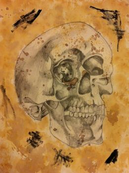 Skull by lietomelapin
