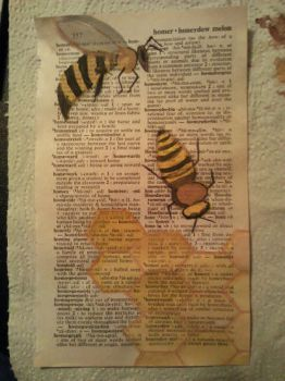 A Study in Honey Bees by animaamin7