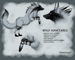 WOLF ADOPTABLE (CLOSED) by Yourtoast