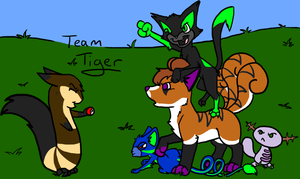 Team Tiger by LassiTheDawg