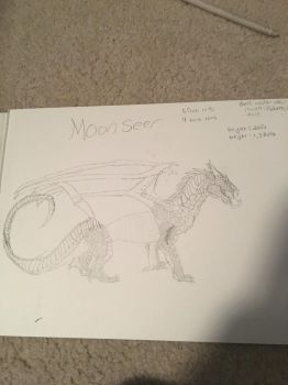 New OC: moonseer by Ghostray567