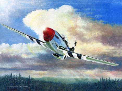 P-51D On The Prowl by DouglasCastleman
