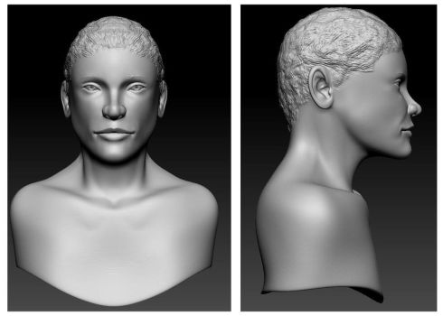 Advanced Game Characters Week 2 - Bust Study by insanity-dezigns