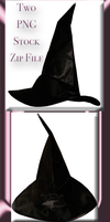 Witch Hat Tube Zip Pack by WDWParksGal-Stock