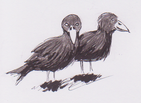 Crows by jaxicle