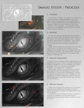 Smaug process (french) by Eli-riv