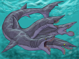 Four Headed Edestus Hydra (Tetraedestus) by Enneigard