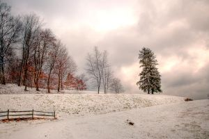 After the Snow 2 by caillteone