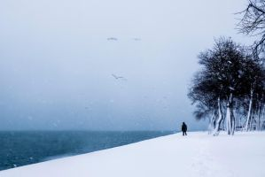 Distant by CekicPhotography