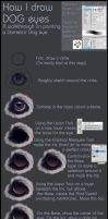 Tutorial: Dog eye by CobraVenom