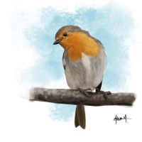European Robin by Tifaeris