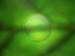 Bubbles - Practice by xeloader