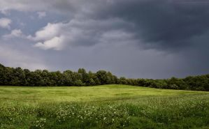 Storm Field by sixwings