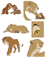 lion bases 5 by whitetigerdelight