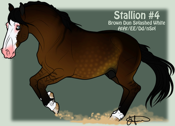 Mustang Stallion Adoption 4 by JNFerrigno